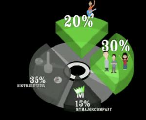 diagram my major company
